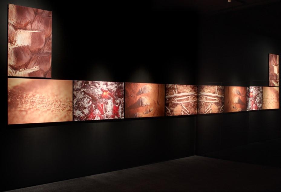 Emirati Expressions exhibition